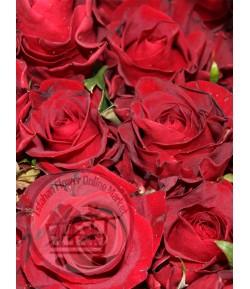 گل رز آنجل (20 شاخه) درجه دو
