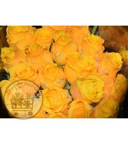 گل رز زرد (20 شاخه) درجه دو