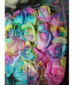 رز هفت رنگ(20 شاخه)