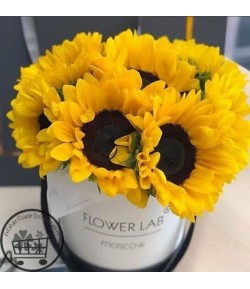 باکس گل آفتابگردان-129