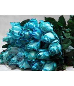 گل رز آبی (20شاخه) درجه دو